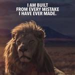 I am built from every mistake I have ever made.