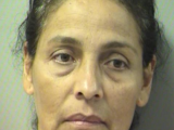 Command Investigations announces the arrest of Angelica Fonseca