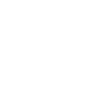 Executive Background Investigations